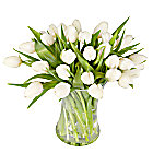 30 White Tulips with Vase