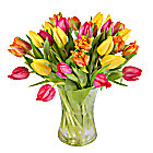Bright Mix Tulips with Vase