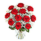 12 Luxury Red Roses with Gyp