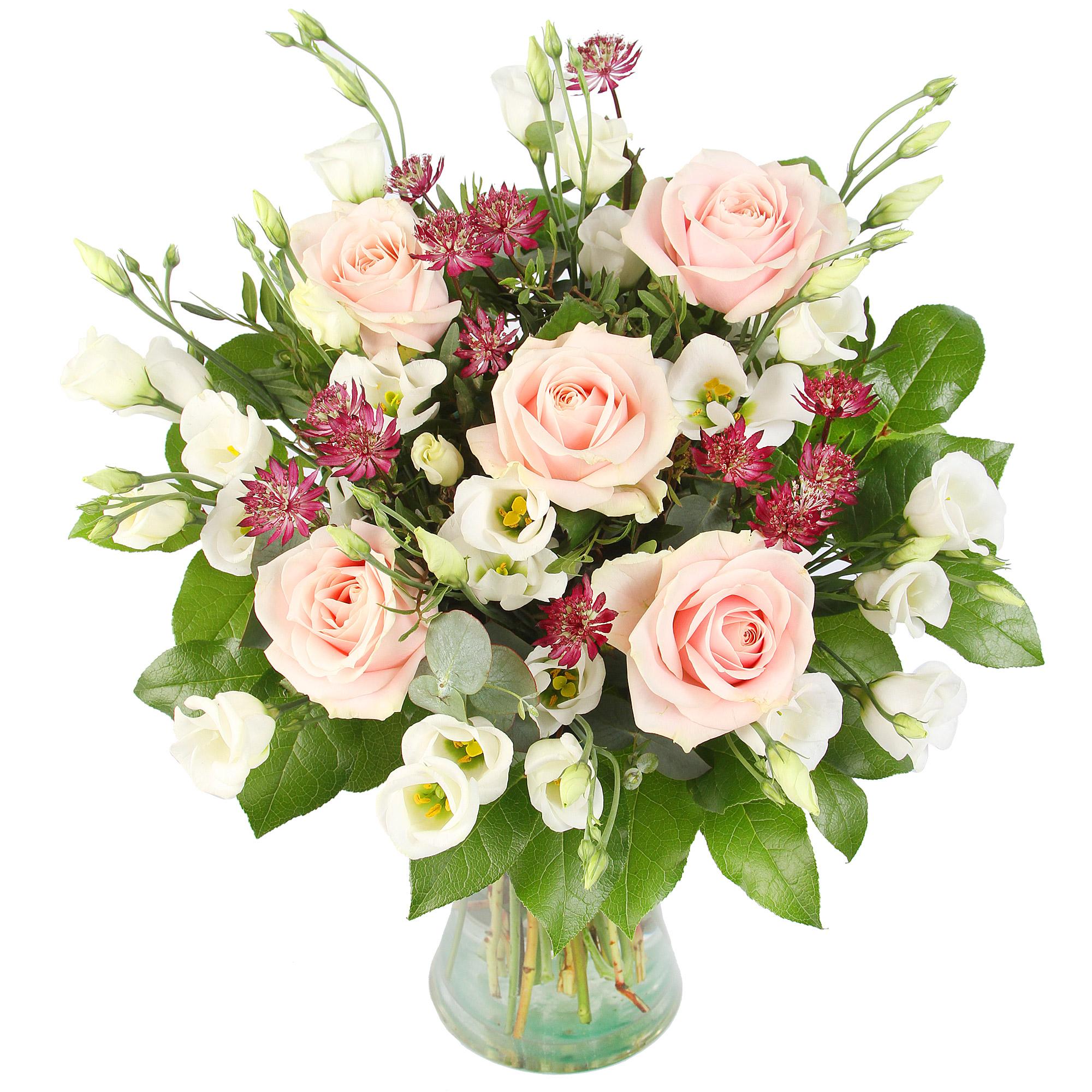 Fleurs Pour Dire Bon Rétablissement éclosion