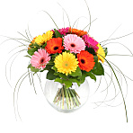 Gerbera<br /> Bouquet