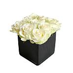 White Roses Cube
