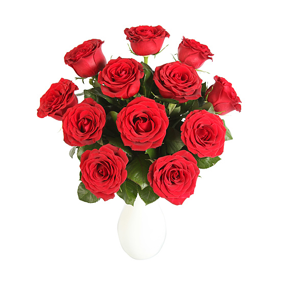 A Dozen Red Roses Giftwrap
