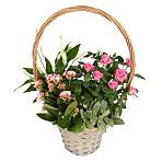 Pink Blooms Basket