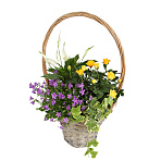 Bright Blooms Basket