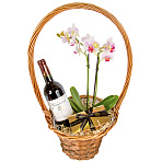 Red Wine and Orchid Gift Basket