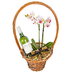 White Wine and Orchid Gift Basket