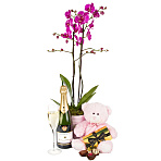 Baby Girl Orchid Gift Set with Champagne