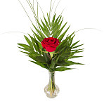 A Red Rose in a Vase