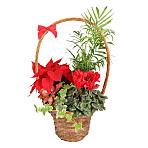 Luxury Christmas Basket