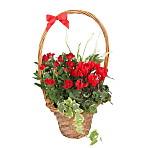 Yuletide Basket