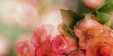 offrir des roses nombre impair