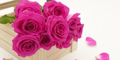 cadeau fleurs anniversaire