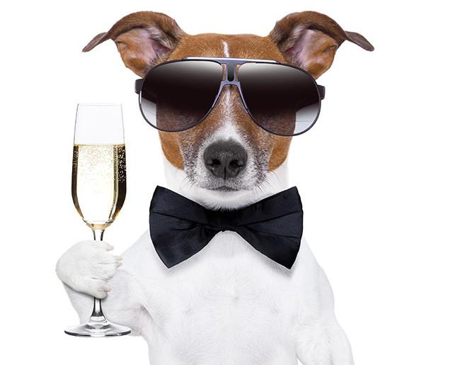 5-erreurs-que-tout-le-monde-fait-en-buvant-du-champagne