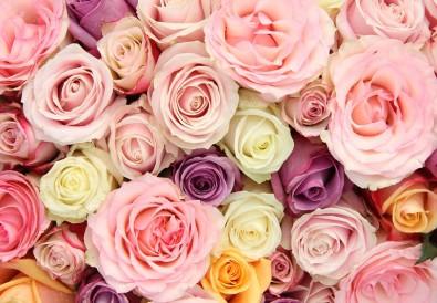 Combien de roses pour un anniversaire