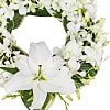 Contemporary Orchid Wreath