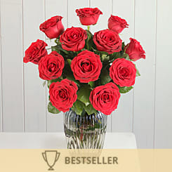 A Dozen Red Roses Giftwrap - Flowers