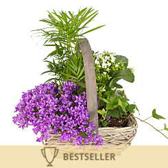 Summer Basket - Flowers