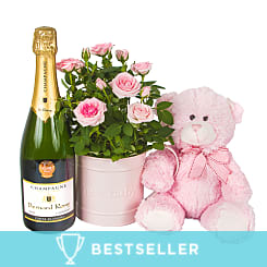 Baby Girl Rose Gift with Champagne - Flowers