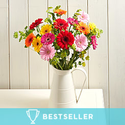 Flirty Gerberas - Flowers