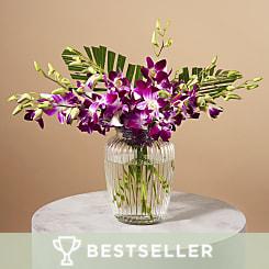 Exotic Flowers Tropical Flowers Serenata Flowers