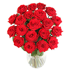 20 Luxury Red Roses - Flowers