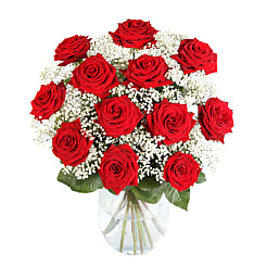 12 Luxury Red Roses with Gyp - Flowers