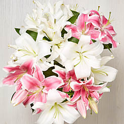 Lush Lilies - Flowers