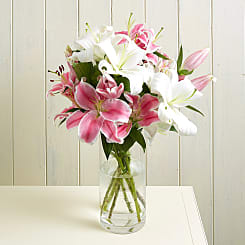 Lush Lillies - Hampers