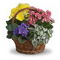 Blooming Planter Basket - Flowers