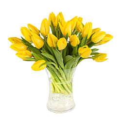 30 Yellow Tulips with Vase - Flowers