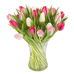 Pink Mix Tulips with Vase - Flowers