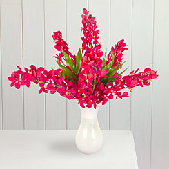 Red Mokara Orchids - Flowers