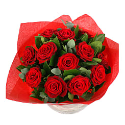 Grandes roses rouges - Flowers