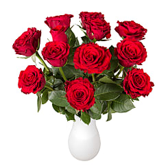 Dozen Red Roses in Letterbox - Flowers