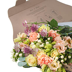 Peach Letterbox Flowers - Flowers