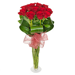 Dozen long stem roses - Hampers