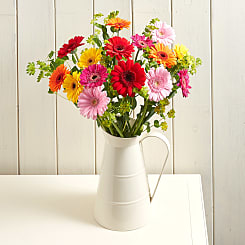Happy Gerberas - Flowers