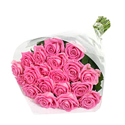 20 Luxury Pink Roses - Flowers