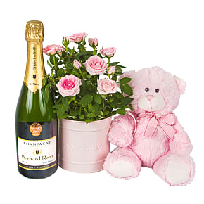 Flower bouquet Baby Girl Rose Gift with Champagne