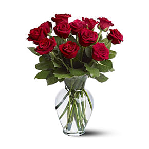 Flower bouquet 12 Long Stemmed Red Roses