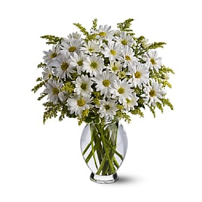 Flower bouquet Classic White Daisies