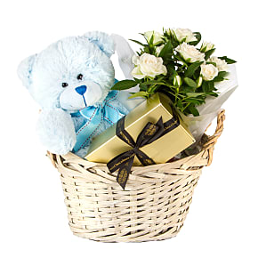 Plant arrangement Baby Boy Gift Basket