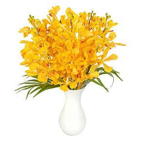 Flower bouquet Yellow Mokara Orchids