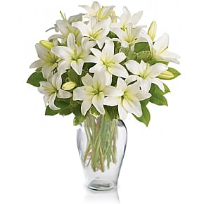 Flower bouquet White Lily Serenity