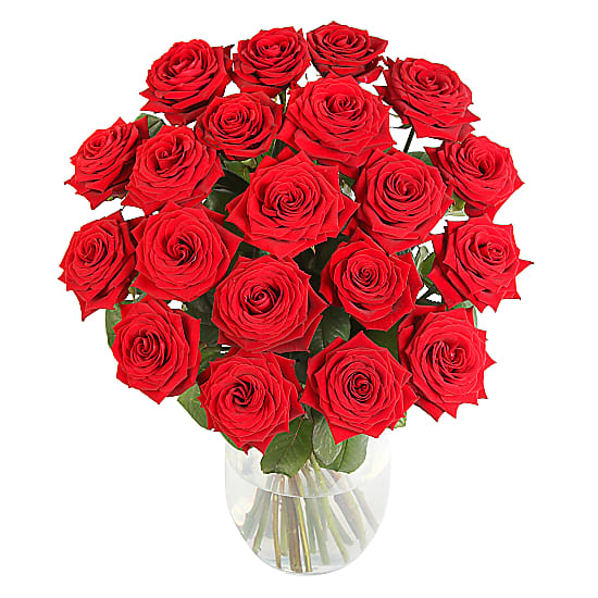 Send Roses Anonymously - 20 Luxury Red Roses