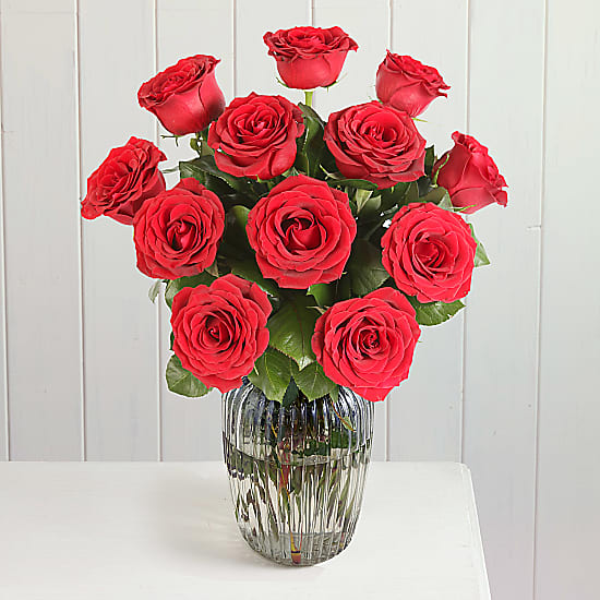 A Dozen Red Roses Giftwrap Delivered Next Day