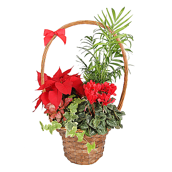 Luxury Christmas Basket