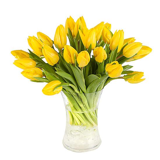 30 Yellow Tulips With Vase Livre Le Jour Suivant