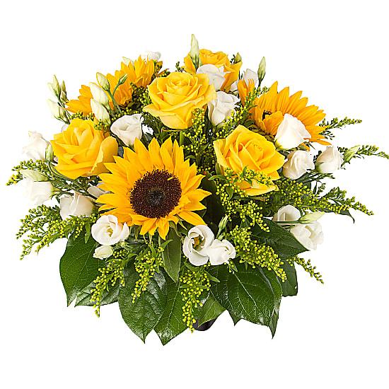 Sunflowers - Summer Sorbet